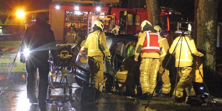 Twee gewonden na botsing met boom in Wittelte.