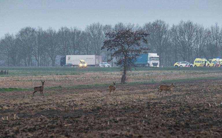 Ongeluk op A28, file tussen De Wijk en afrit Zuidwolde.