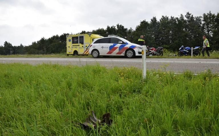 Motorrijder gewond bij botsing met buizerd.