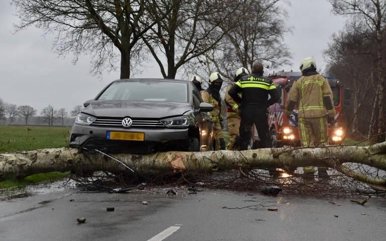 Auto botst frontaal op ongevallen boom op Halerweg tussen Hooghalen en Zwiggelte.