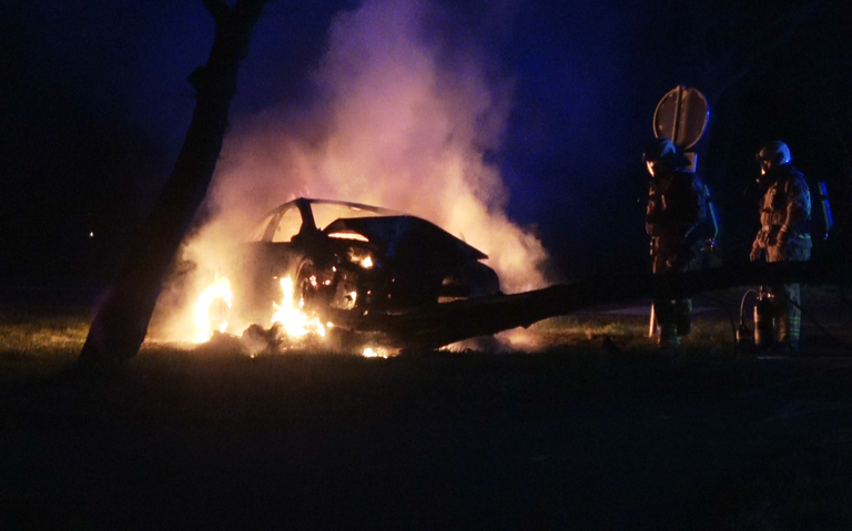 Auto vliegt in brand na botsing tegen boom.