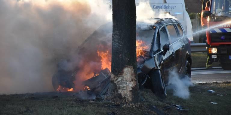 Auto vliegt in brand op N366 na botsing tegen boom.