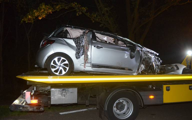 Automobiliste laat auto achter na botsing met boom en lantaarnpaal in Ter Apel.